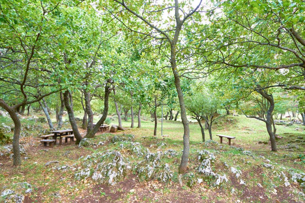 area attrezzata barbecue Roccamontepiano 4