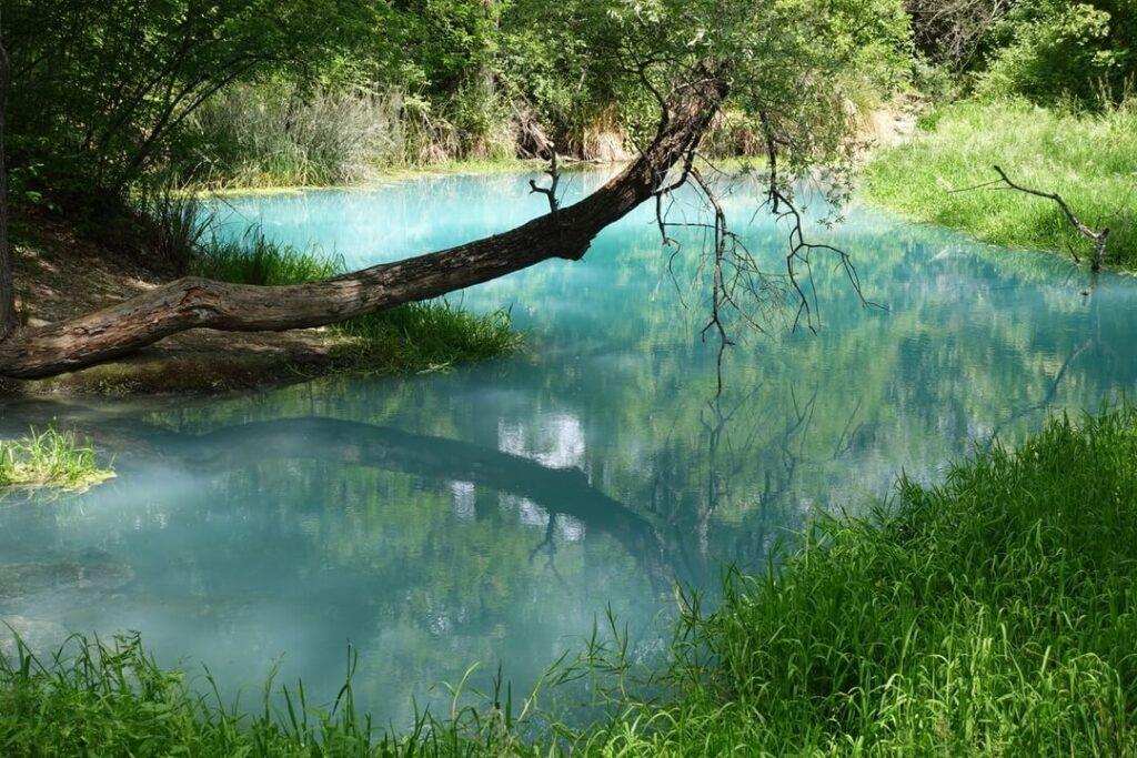 sorgenti fiume lavino 1